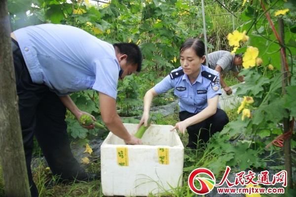 贵州锦屏公安局驻村民警走田间地头帮扶