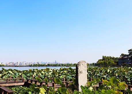 在浙江,农村生活污水户用设备即将迎新标尺