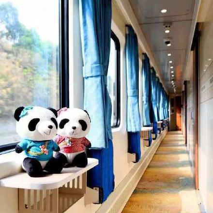 注意!12306可以预定熊猫专列啦